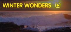 Winter Adventure Tour of Ireland with Wolfhound Adventure Tours